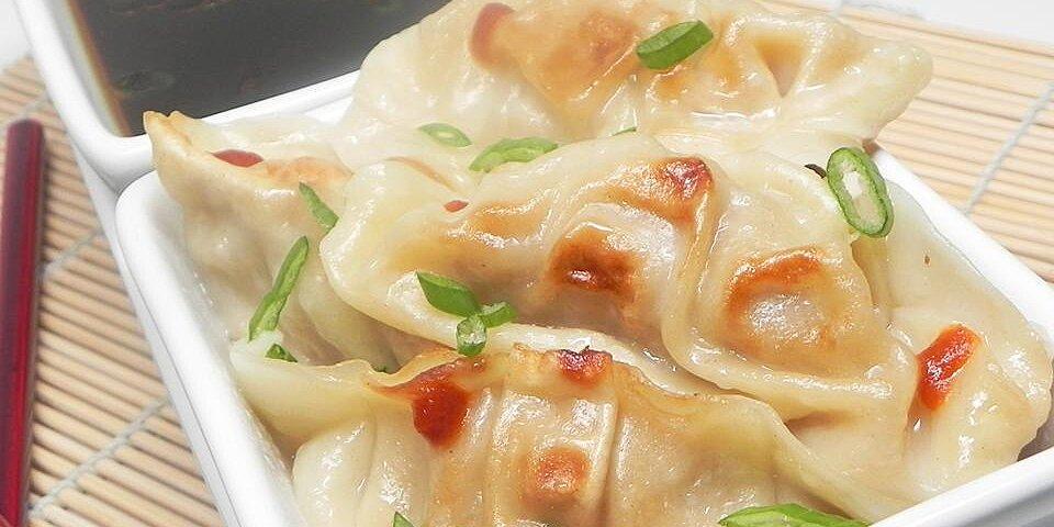 gyoza japanese potstickers recipe