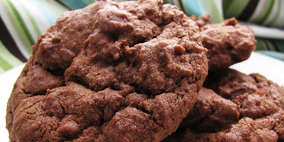 chocolate chocolate chip cookies i recipe