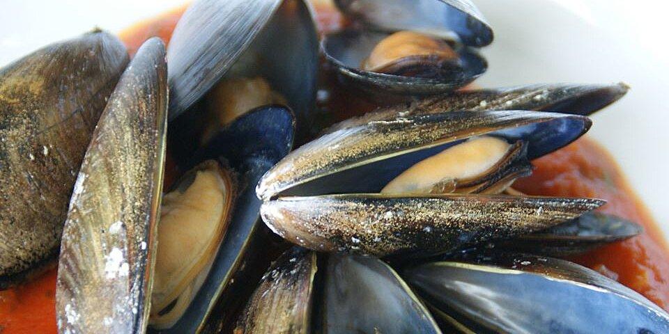 appetizer mussels recipe