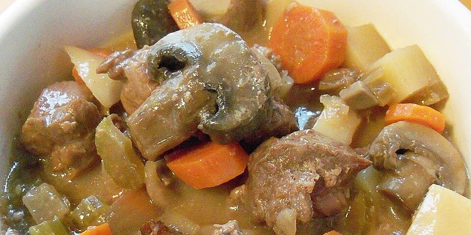 slow cooker beef stew iii recipe