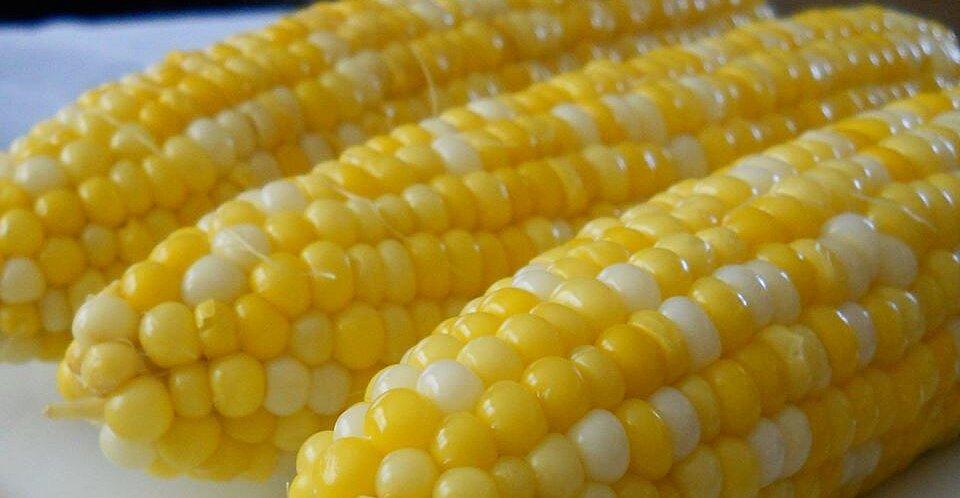 Jamie's Sweet and Easy Corn on the Cob Recipe | Allrecipes