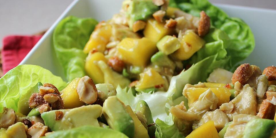 chicken avocado and mango salad recipe