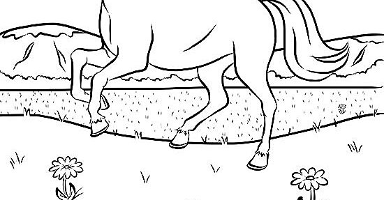 Running Horses Coloring Pages