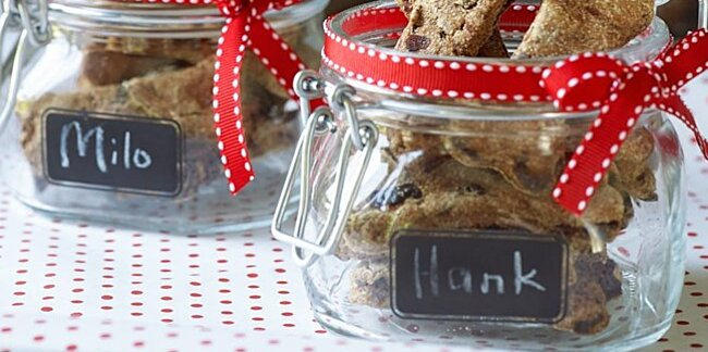 homemade holiday food gifts for the pets in your life