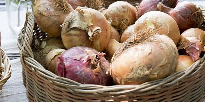 whats the difference between white yellow and red onions