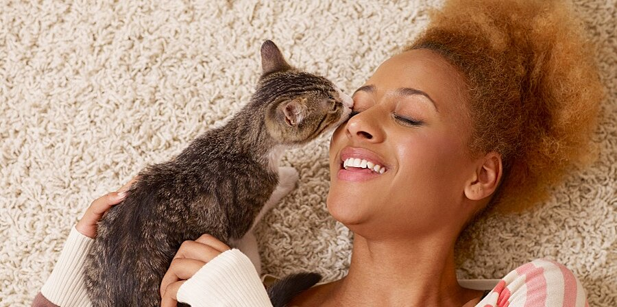 Yes, Your Cat Loves You Back—Just Ask Scientists