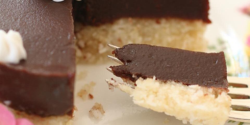 gluten free chocolate cake with coconut recipe