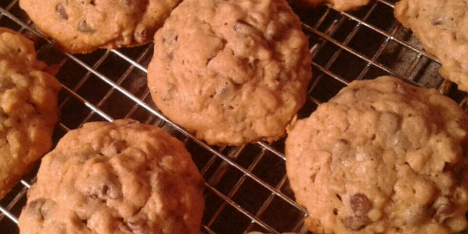 back to oatmeal peanut butter and chocolate chip cookies recipe