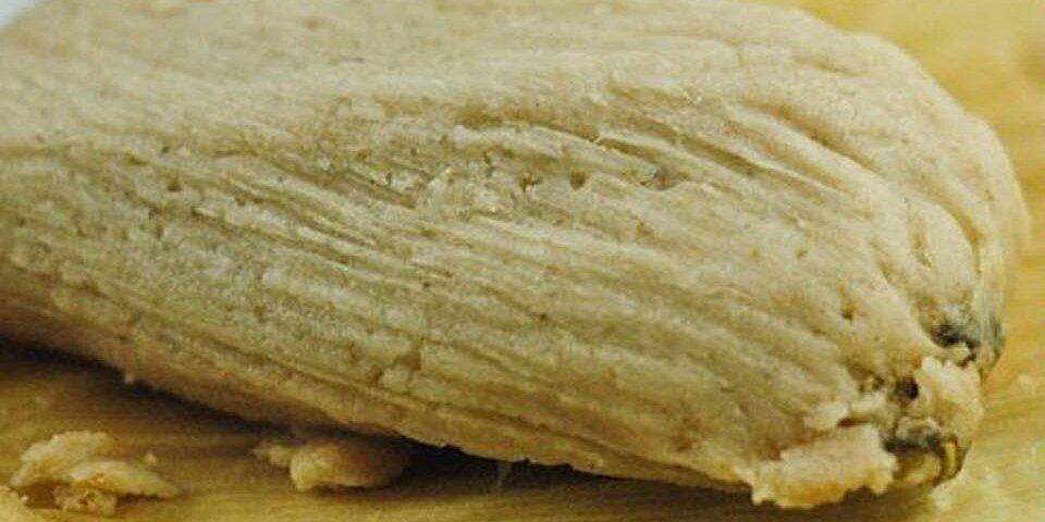 sweet orange tamales recipe