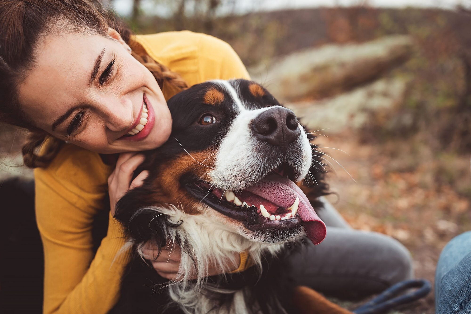 Is It Ok to Hug Your Dog? | Daily Paws