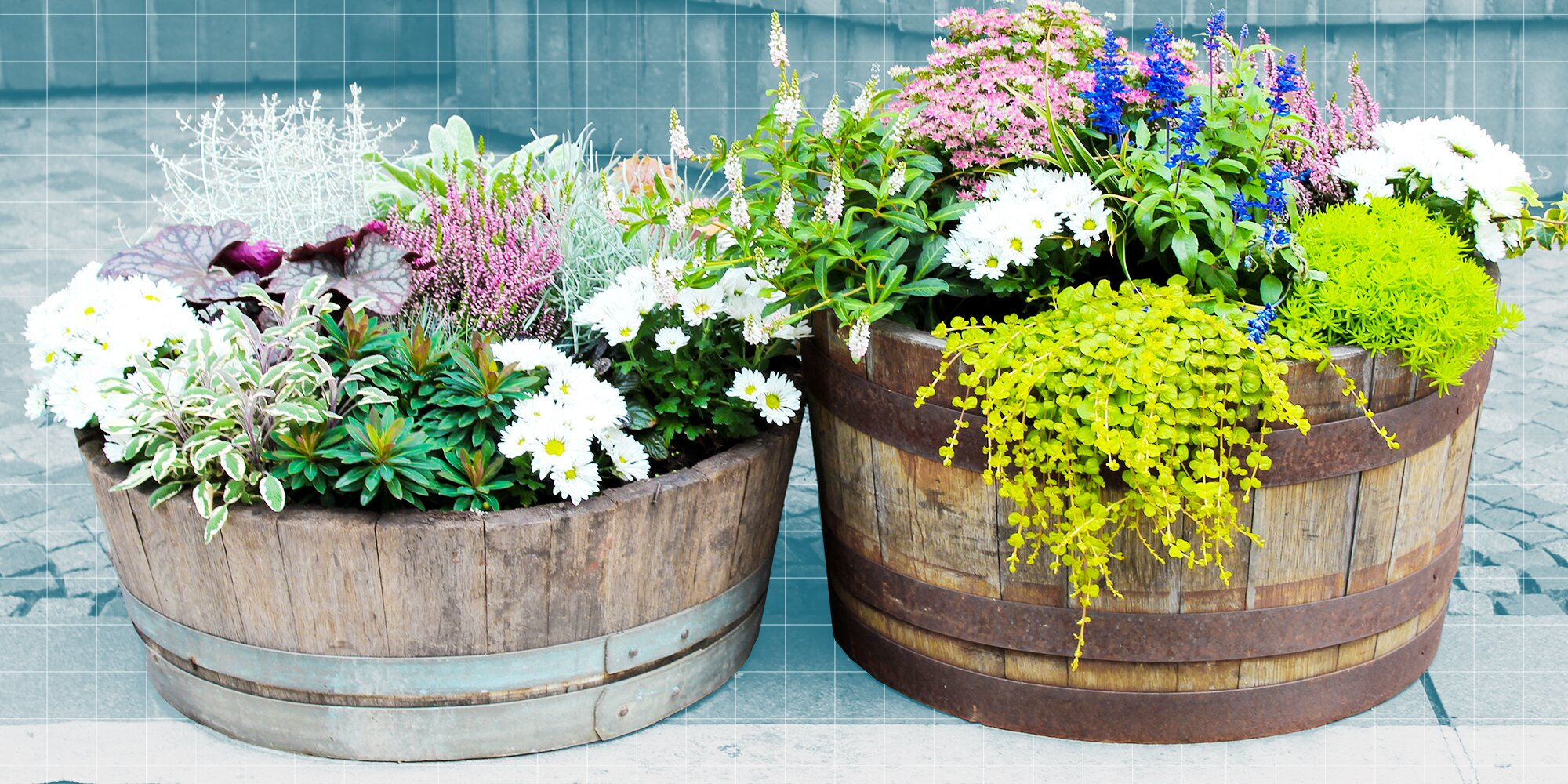 This Easy Pinterest Formula Makes My Container Gardens Look Perfect Every Time