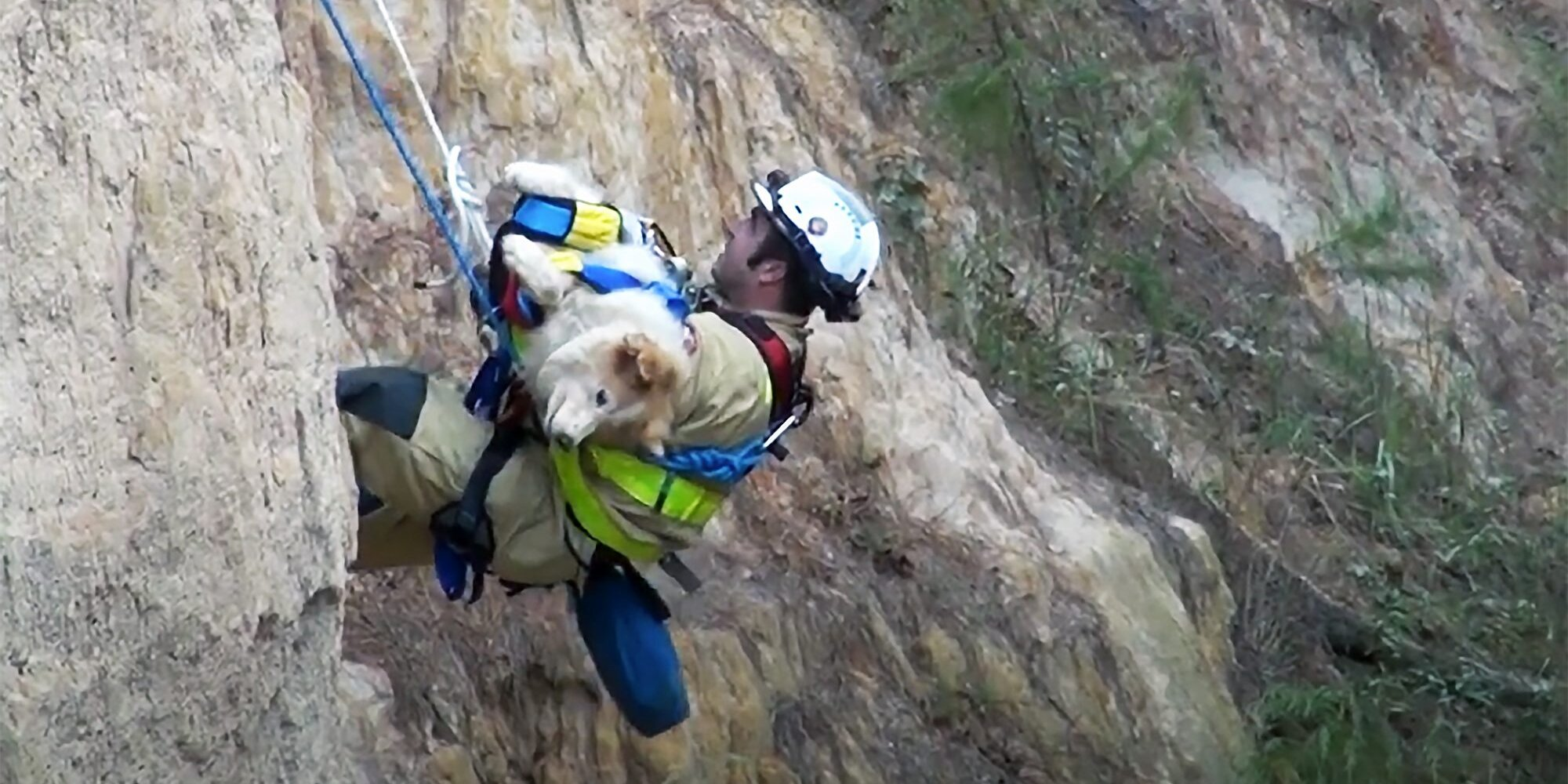 Man and Dog Rescued by Fire Department From 50-Foot Ravine