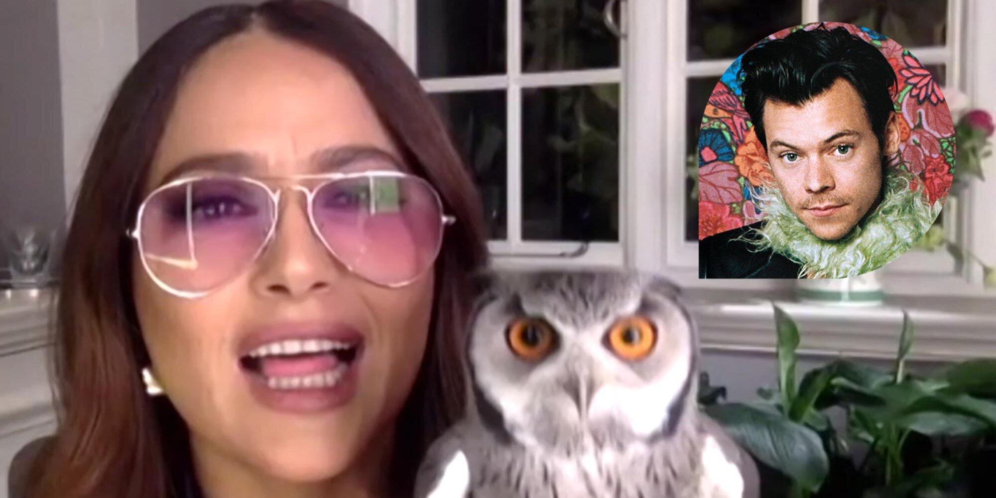 Salma Hayek fondly recalls her pet owl vomiting a 'ball of rat hair' on Harry Styles.jpg