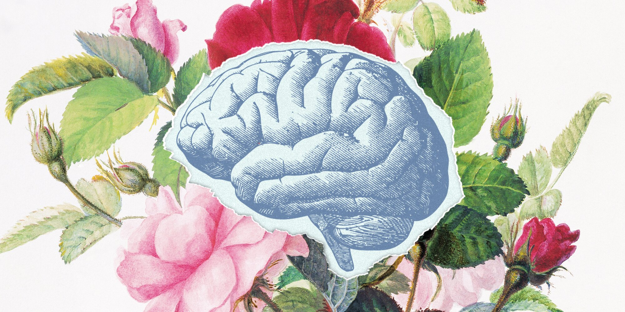 5 Things You Shouldn't Do When Trying to Boost Brain Health-And 5 Things You Should