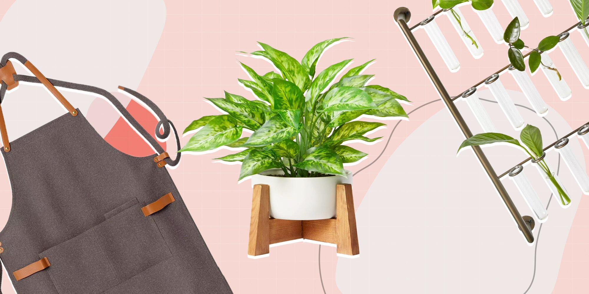 Target's New Houseplant Collection Looks High End-but Is Actually Super Affordable