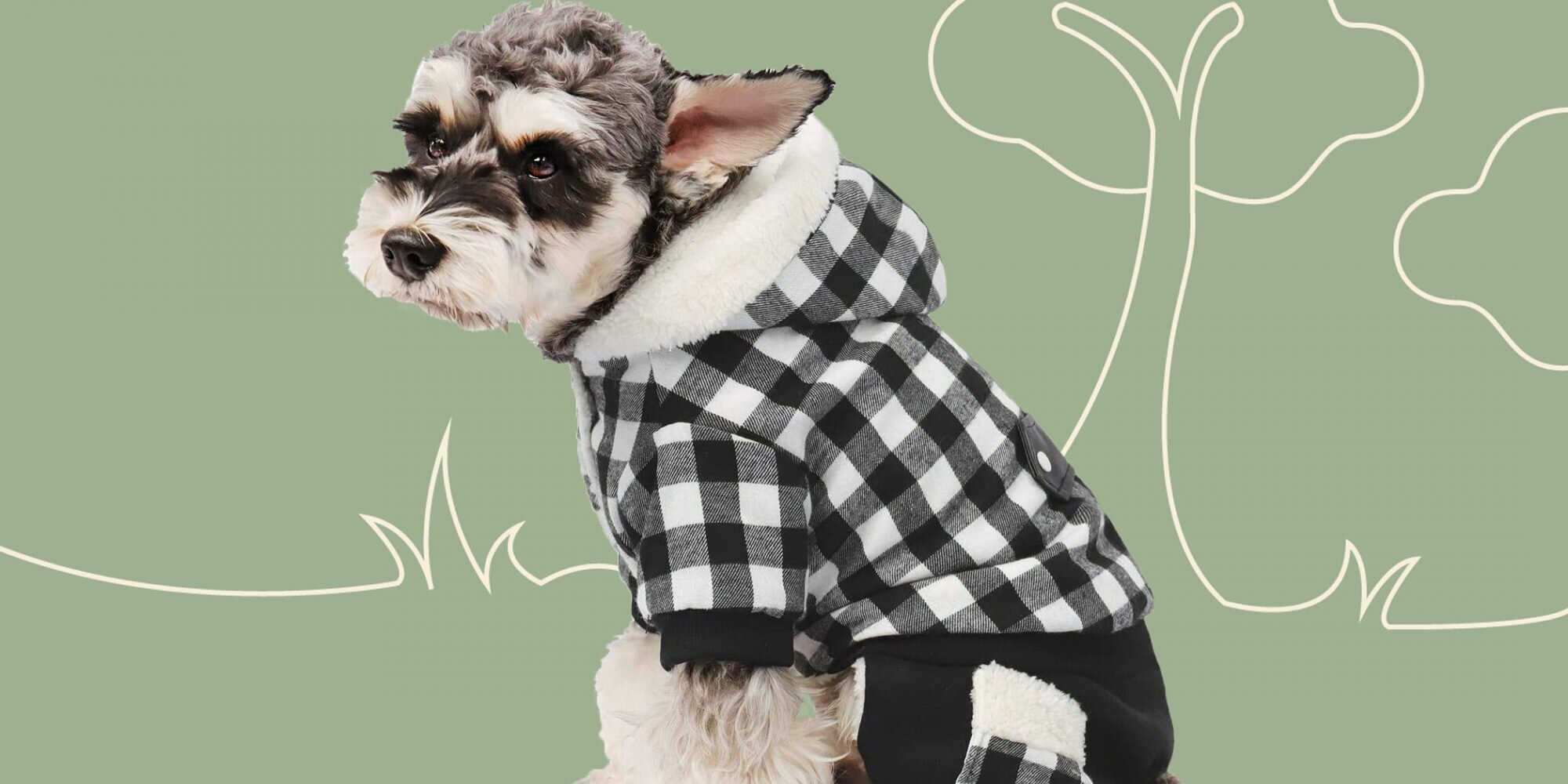 These Adorable Winter Coats Will Keep Your Dog Warm, Toasty, and Oh-So-Fashionable