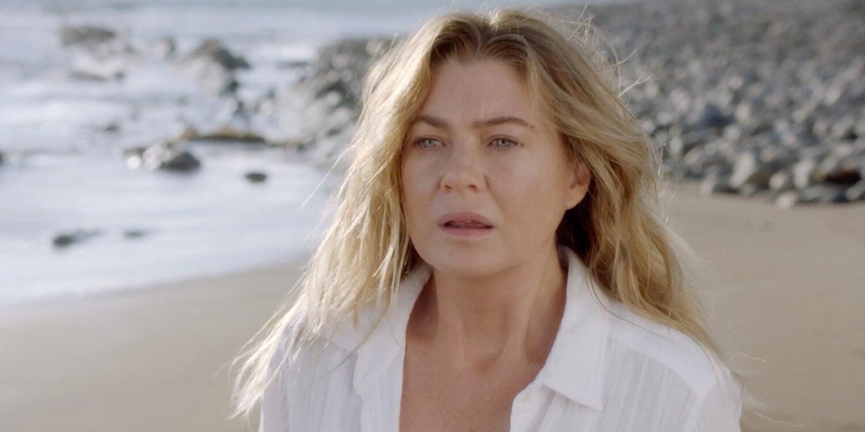 'Grey's Anatomy' boss talks writing season 17 'as if it's the last sea... image