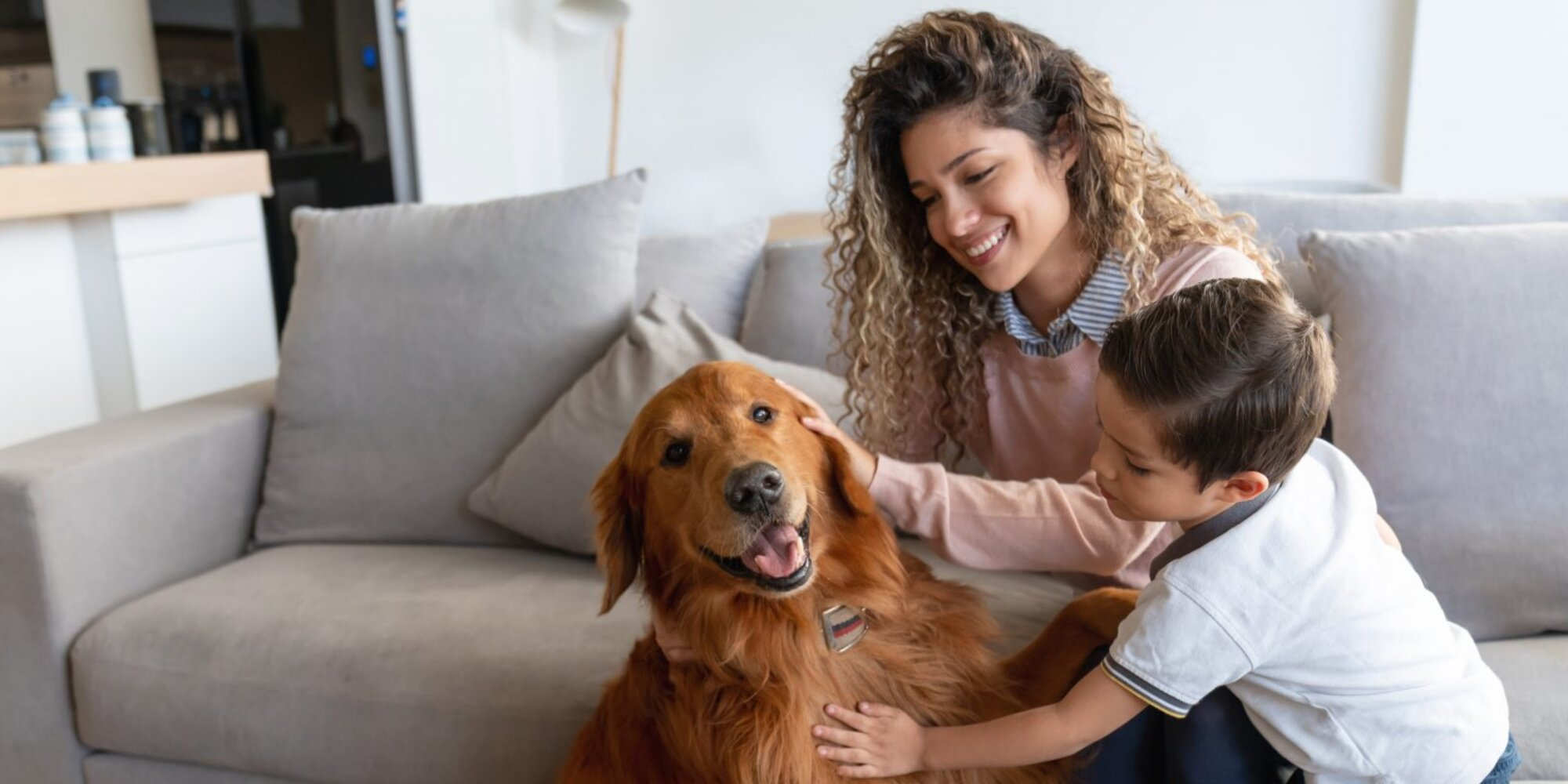 The Most Loyal Dog Breeds