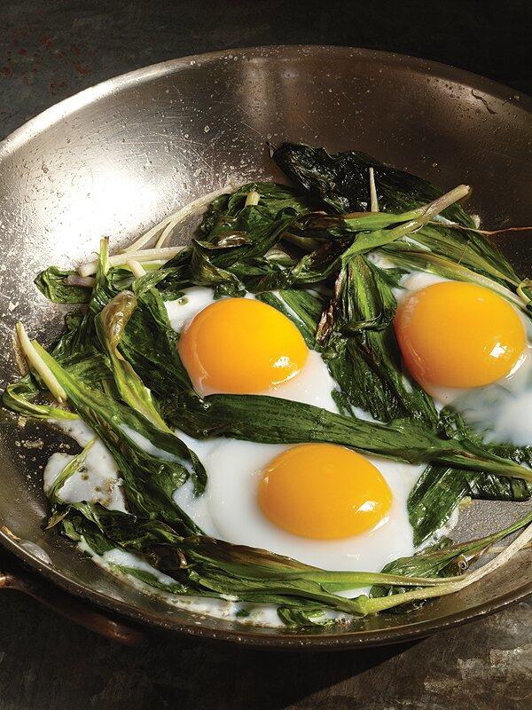 Eggs &