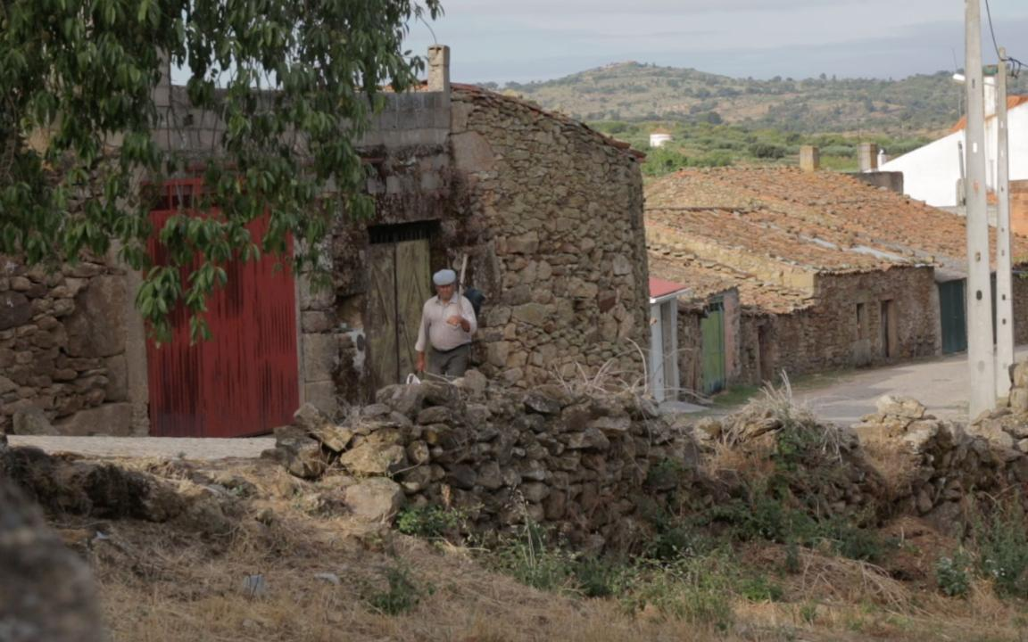 See How Nature Has Reclaimed Portugal's Côa Valley
