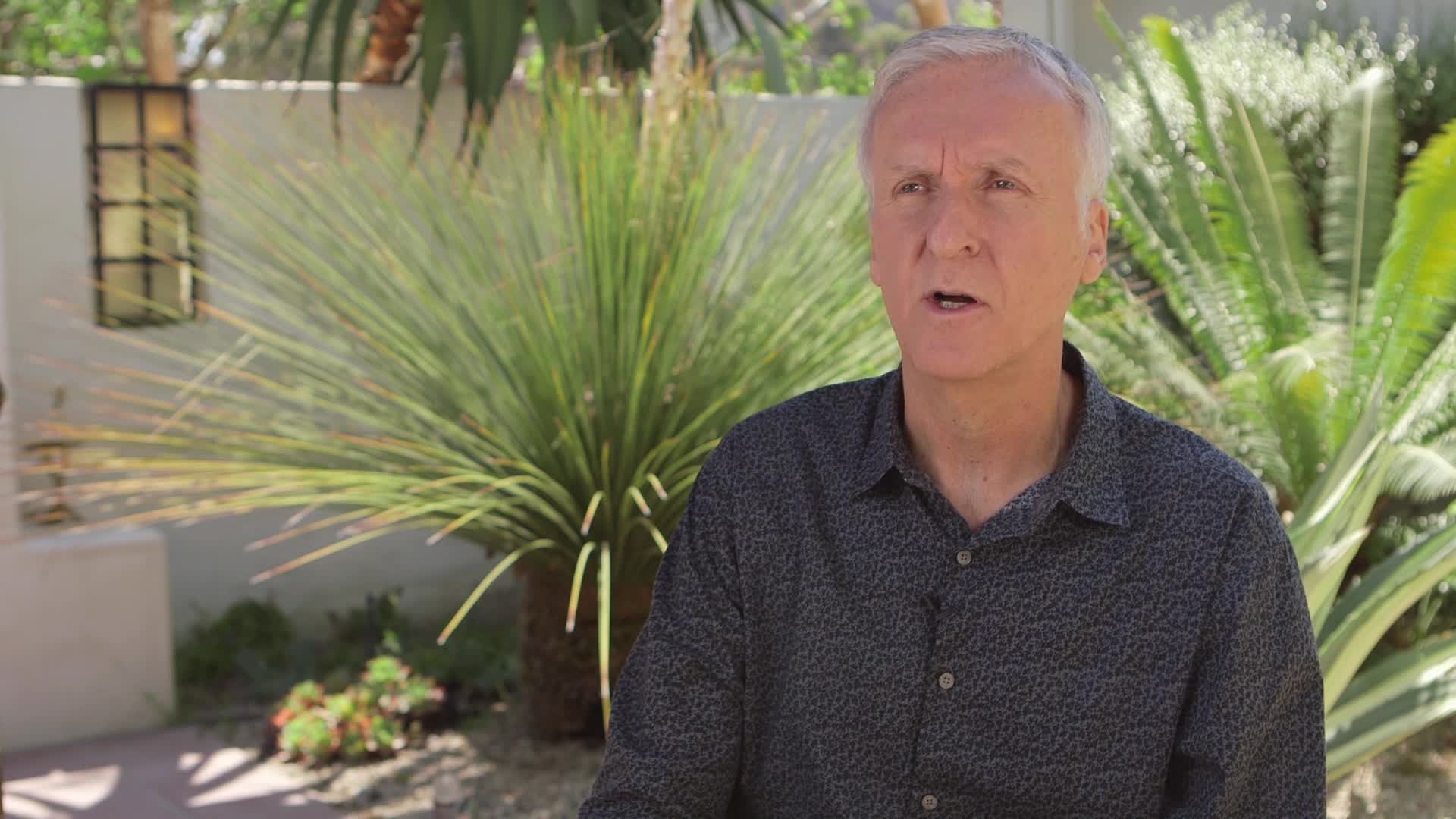 Director James Cameron on How New Zealand Influenced the 'Avatar' Franchise