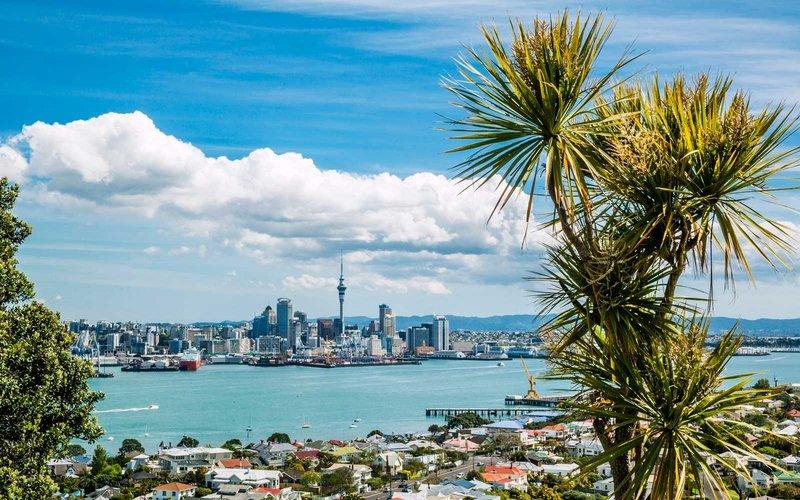 These $239 Round-trip Flights to New Zealand Could Disappear at Any Moment (Video)