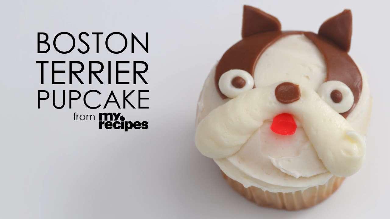 Video: Boston Terrier Pupcakes
