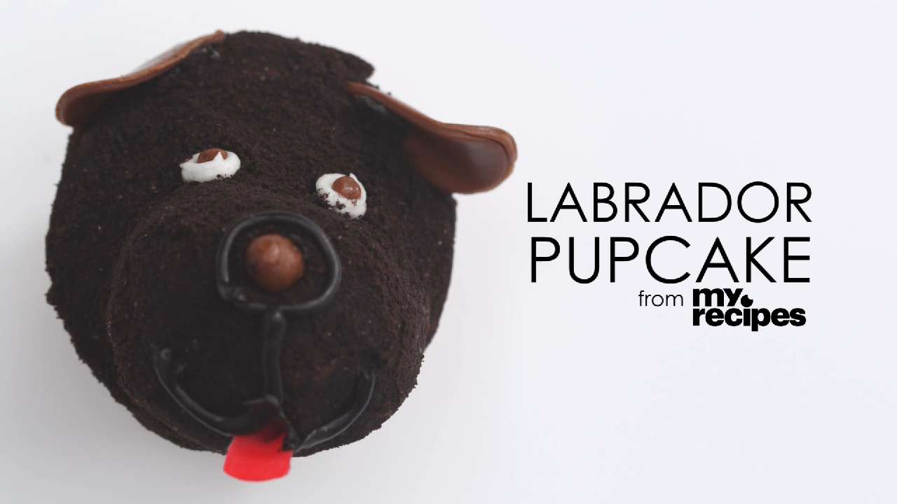 Video: Labrador Pupcake
