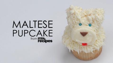 Video: Maltese Pupcakes
