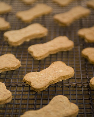 5021_102609_dog_biscuits.jpg