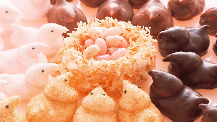 Tempered Chocolate for Marshmallow Chicks