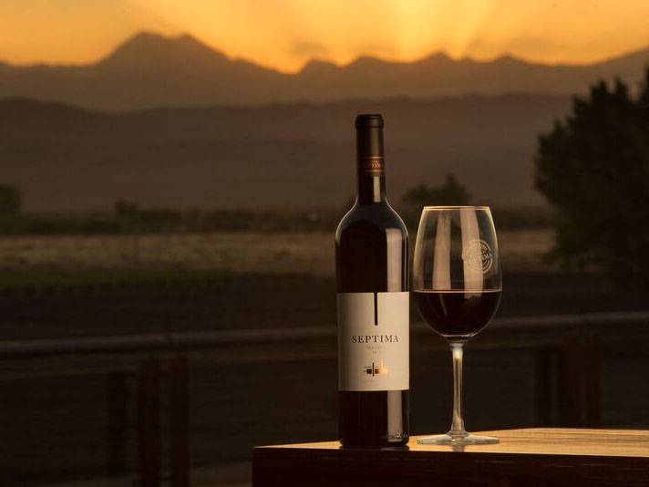 Bottle Notes Eye In Sky >> 25 Bottles Of Argentine Malbec To Drink Right Now