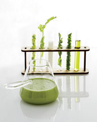 images-sys-201107-a-kitchen-science.jpg
