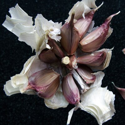 Thousand-Year-Old Garlic-Based Recipe Is More Effective Than