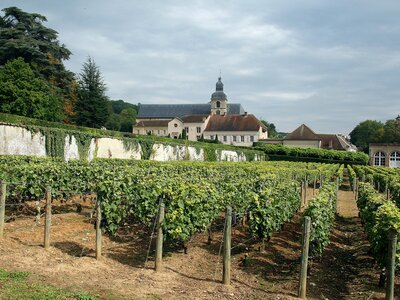 These Distilleries Wineries And Fashion Houses Will Offer