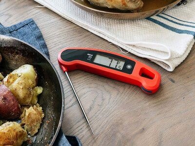 The Best Meat Thermometer on Amazon | Food & Wine