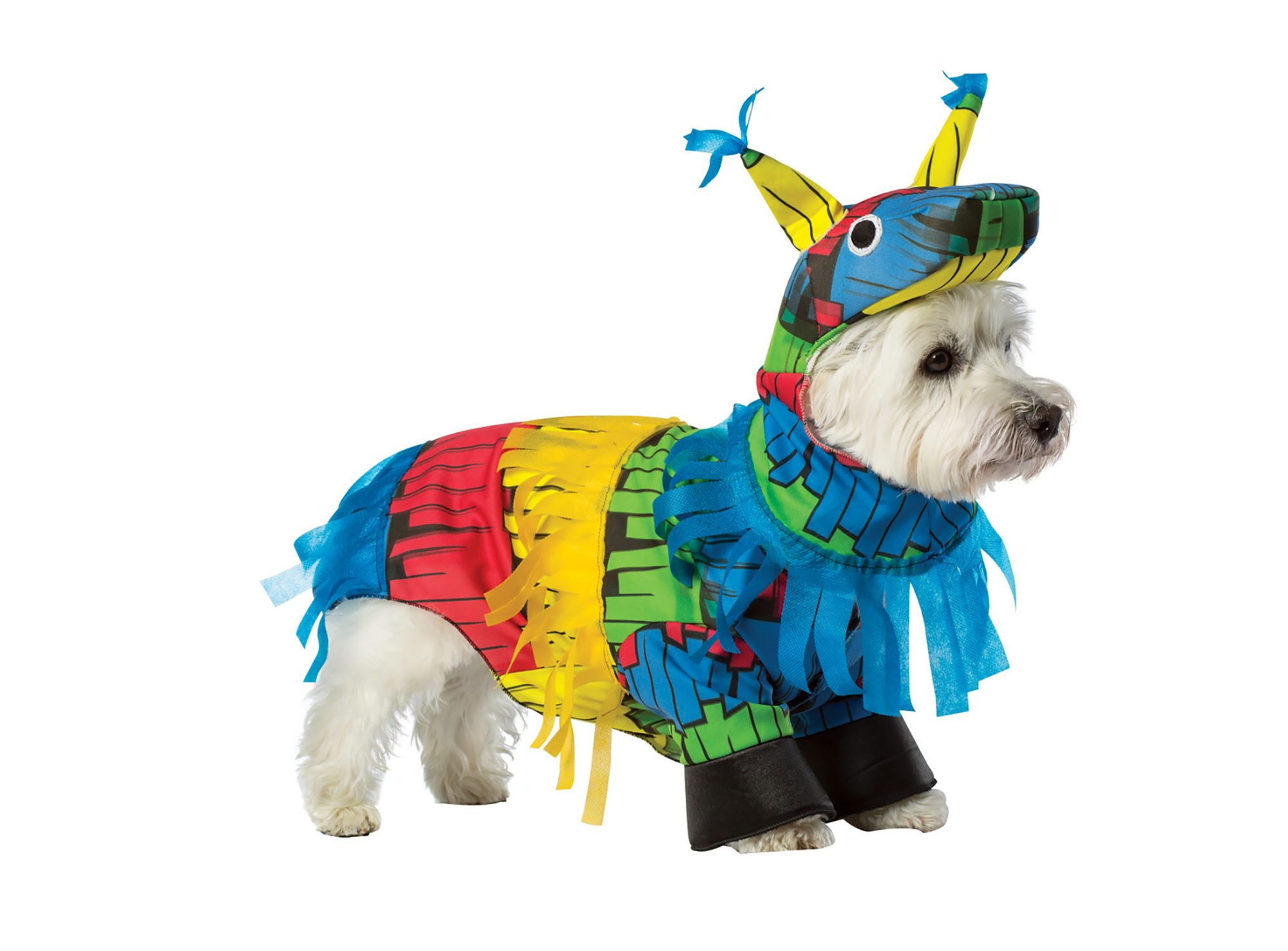 1709w-Pinata-Dog-Costume.jpg