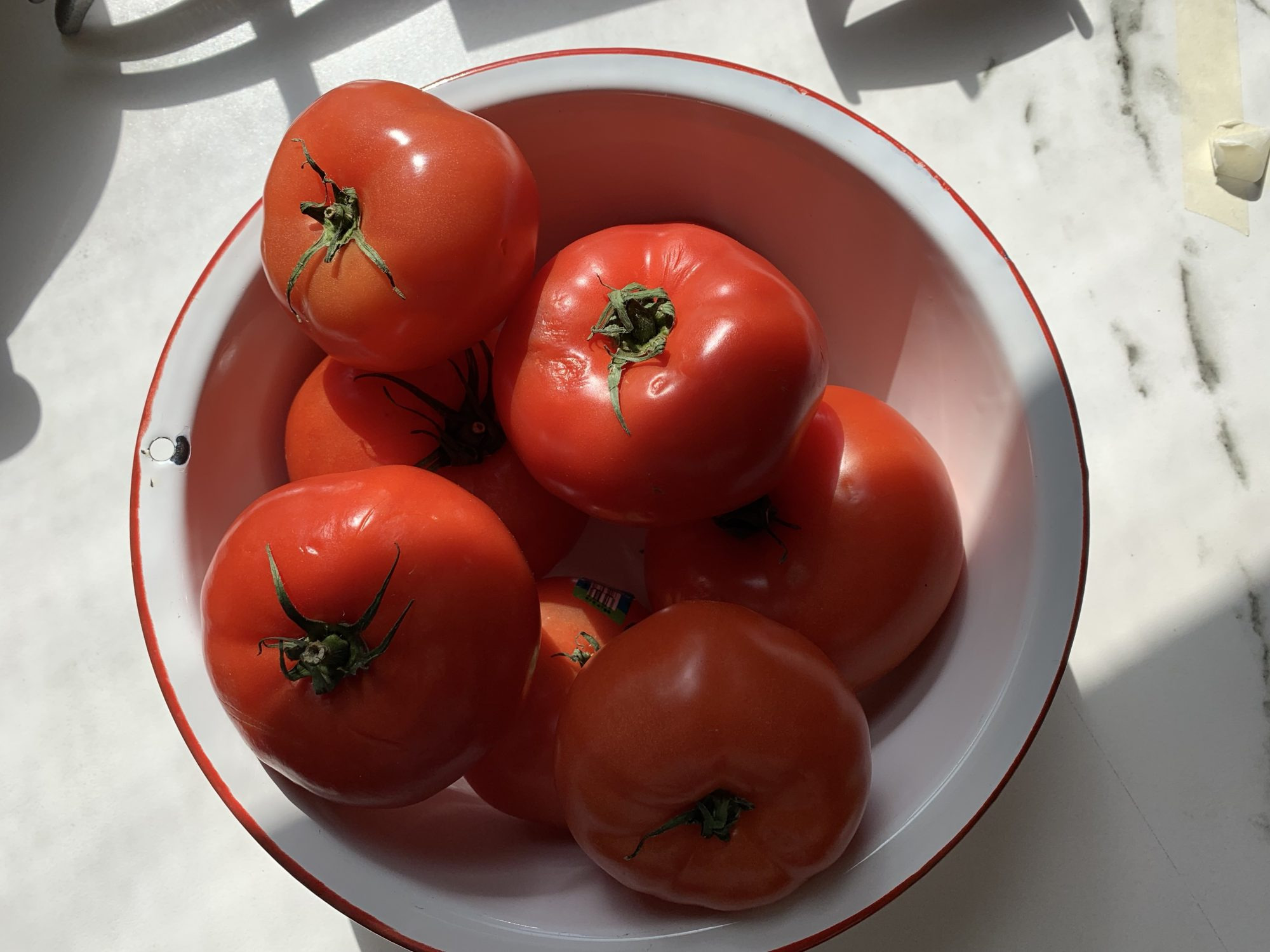 tomatoes-for-sauce