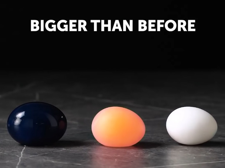 The Egg Is Bigger image.jpg