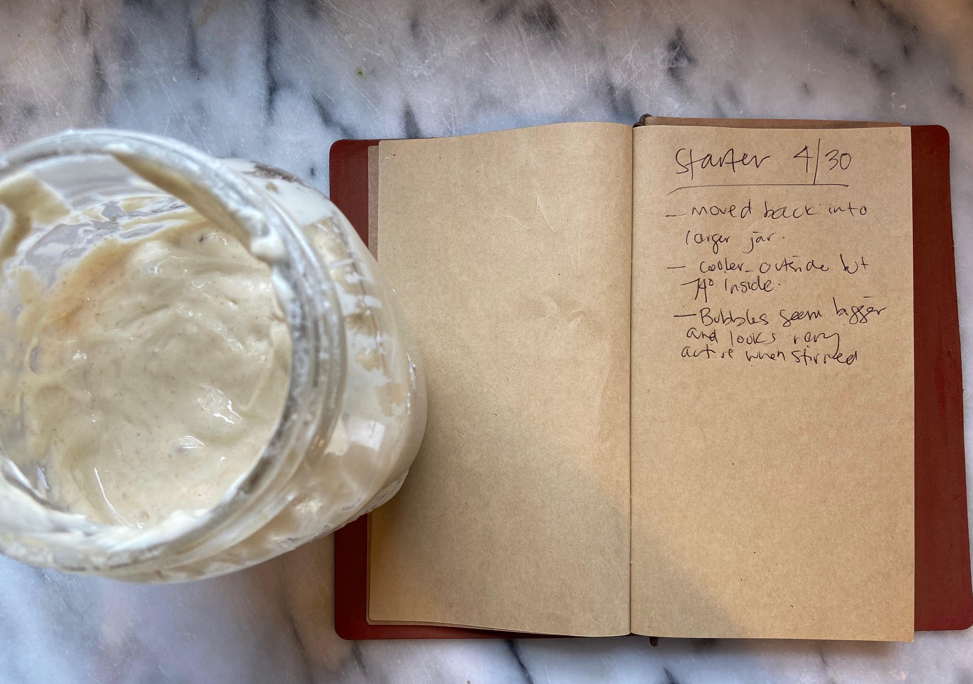 Sourdough Starter Journal