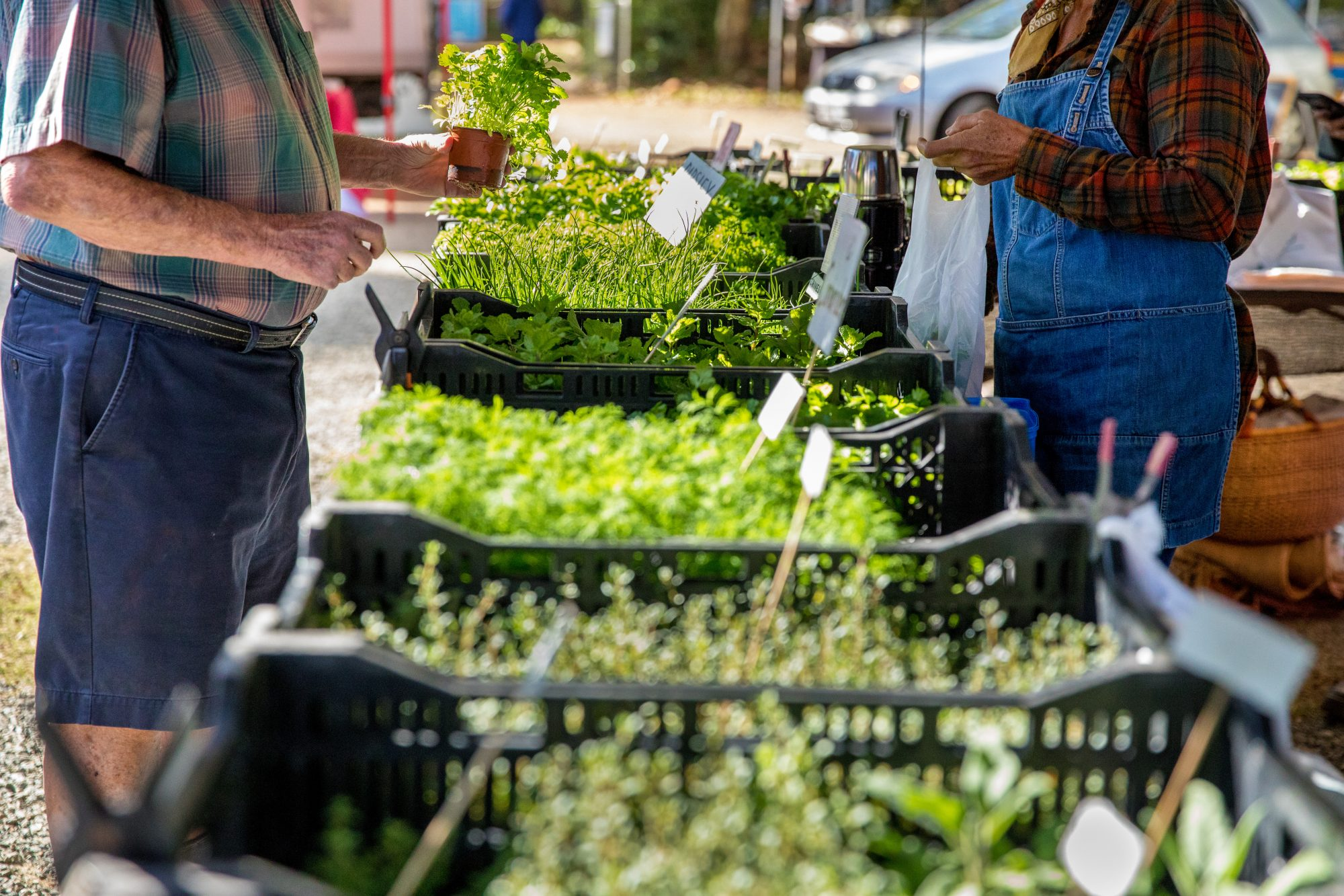 8 Rude Things You Do at the Farmers' Market, According to the Vendors Themselves