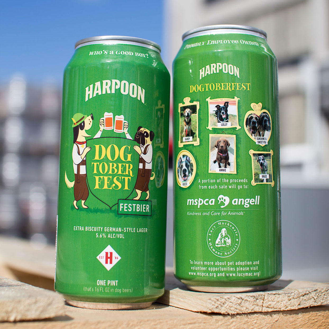 Harpoon's New Beer Allows You to Help the Adorable (and Adoptable) Dogs on the Can