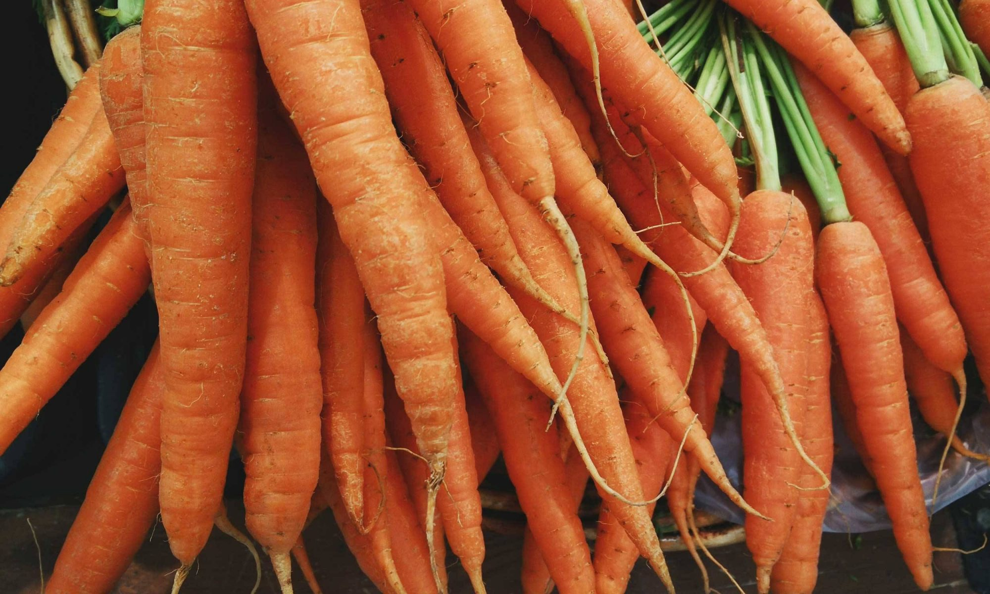 Bunch of fresh, raw carrots