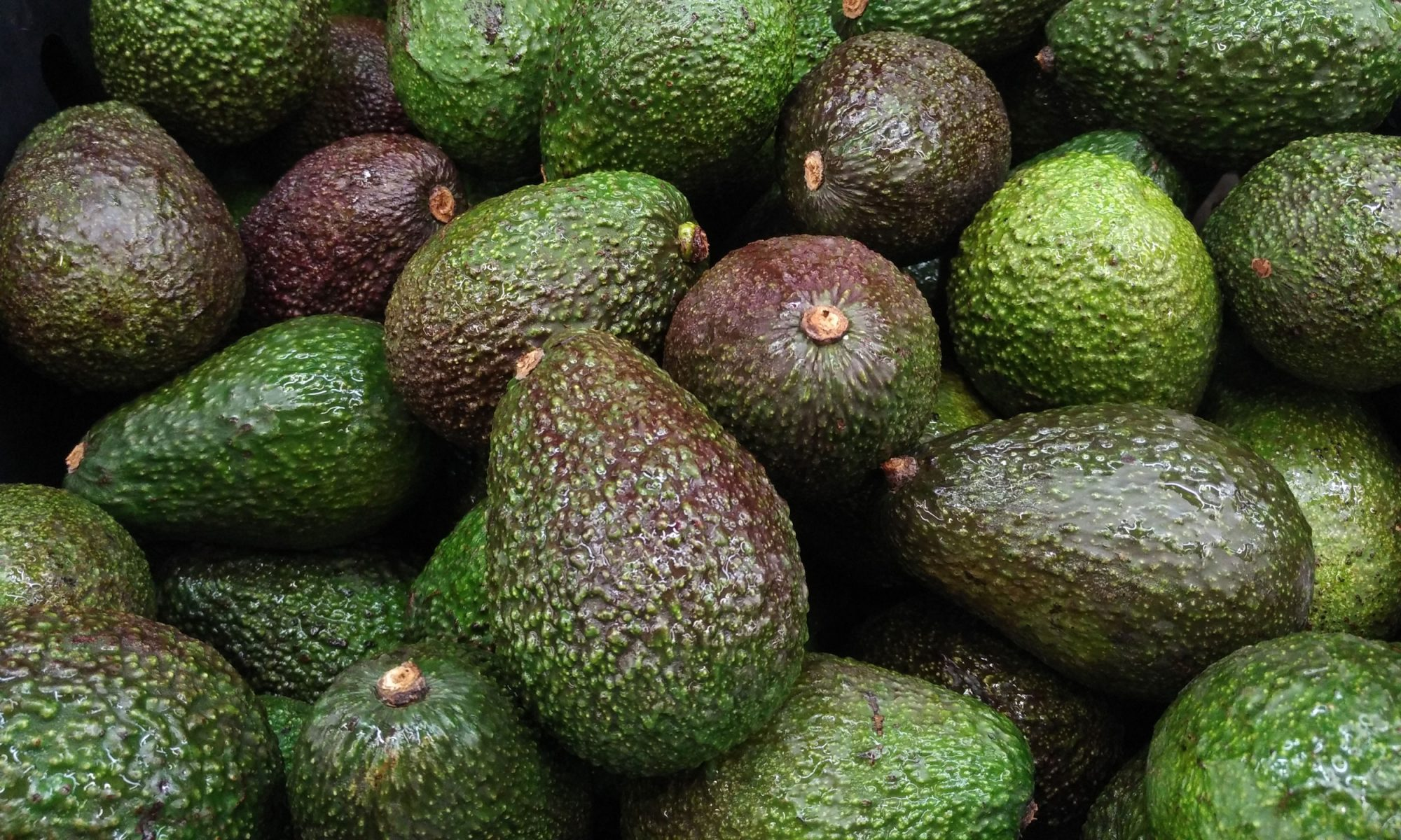 EC: 'Avocado Anxiety' Officially a First-World Problem