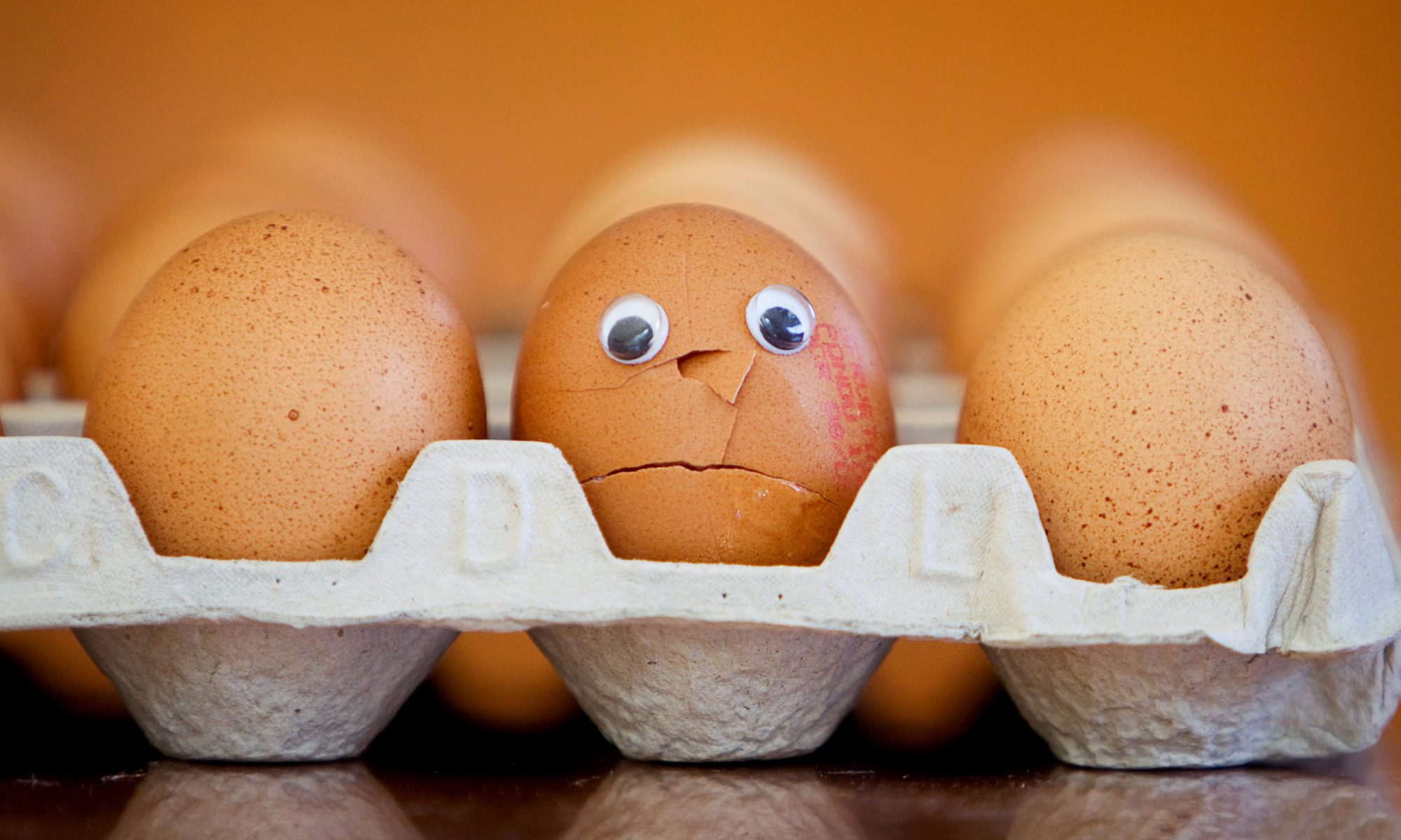EC: Buying Eggs? Learn These Terms First