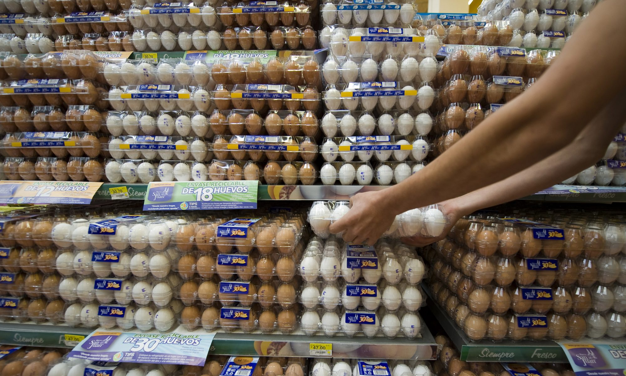 EC: Egg Prices Have Reached a 10-Year Low