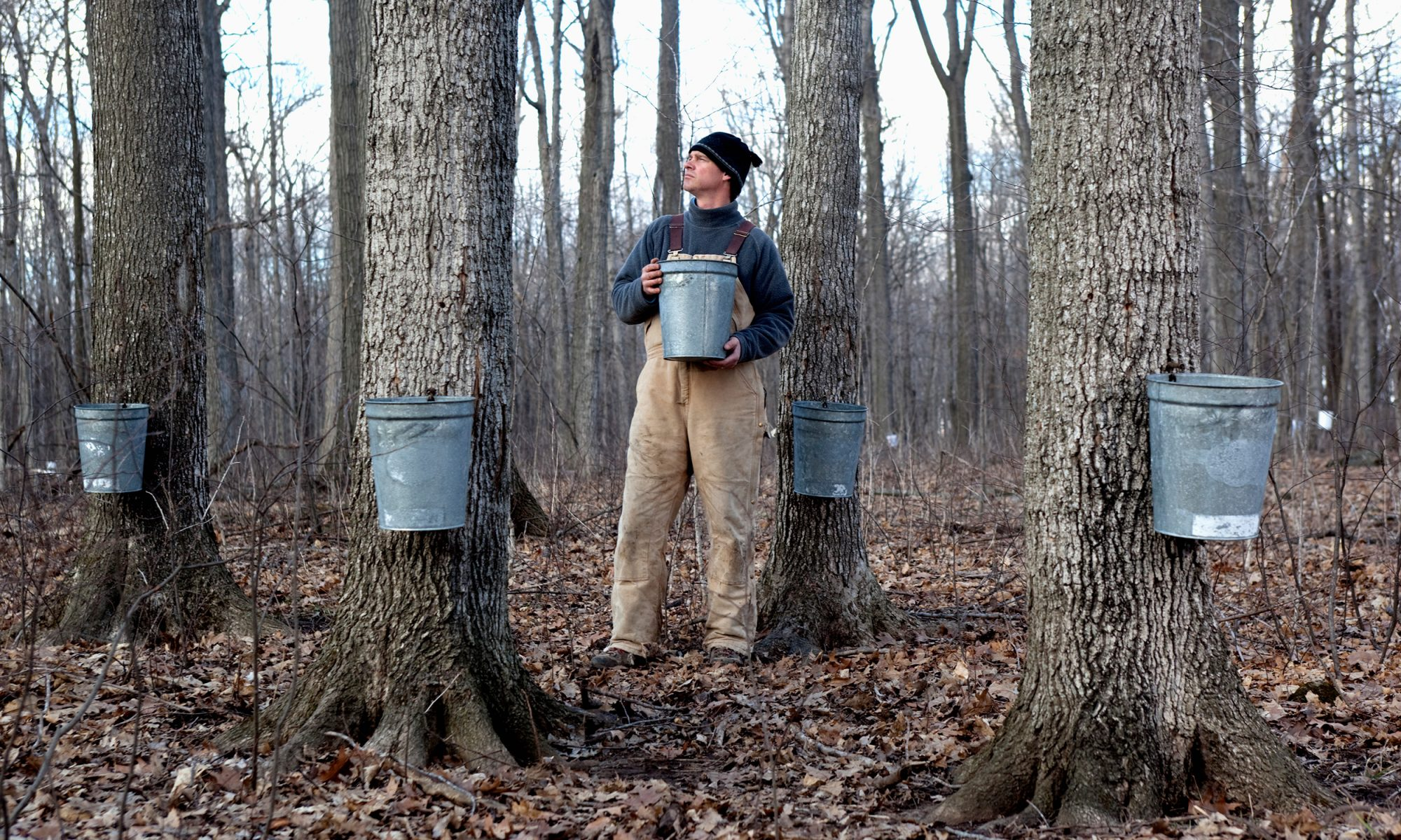EC: The Maple Syrup Industry Will Always Be Mad About Fake Maple Flavoring