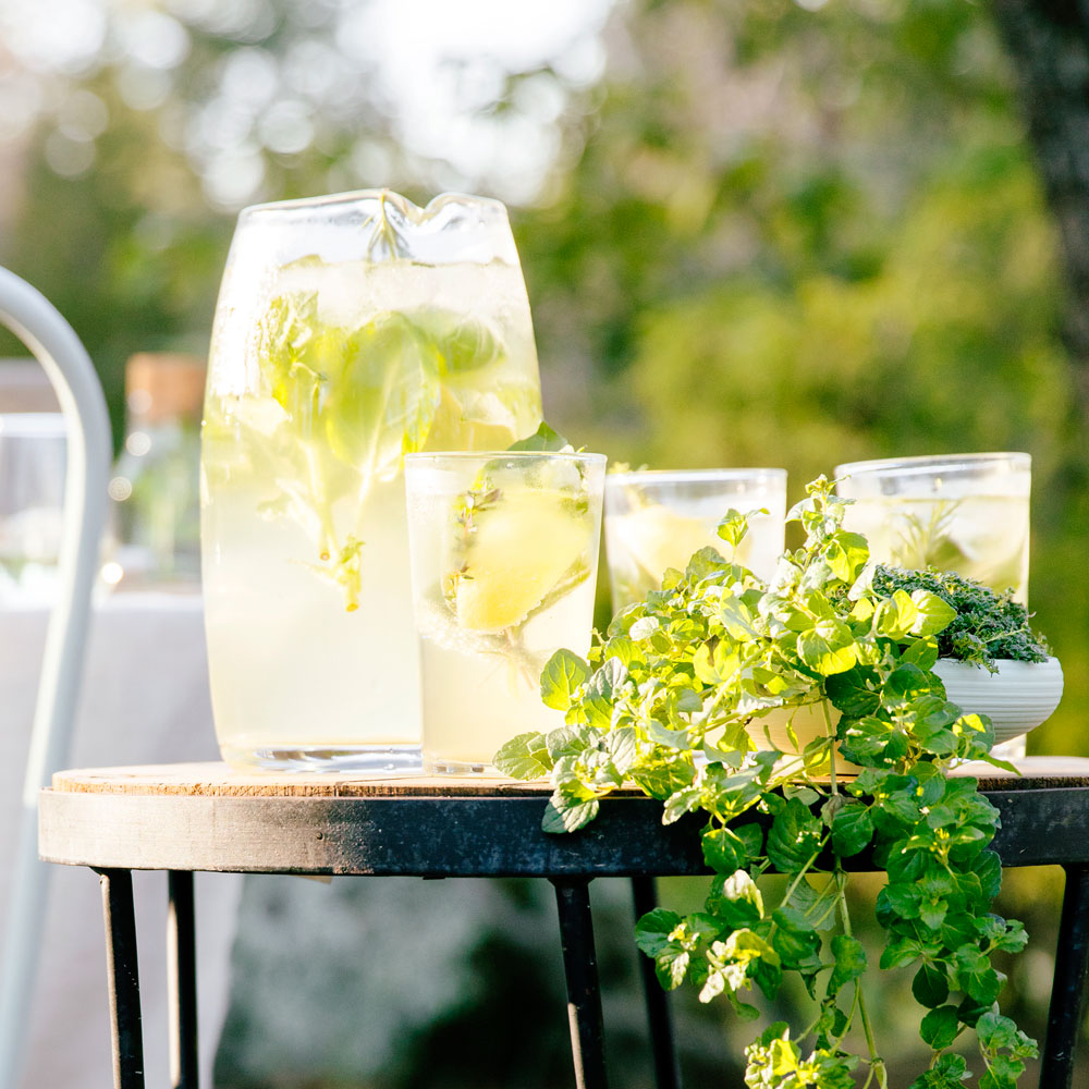 Sparkling Herb and Lemon Spritzer