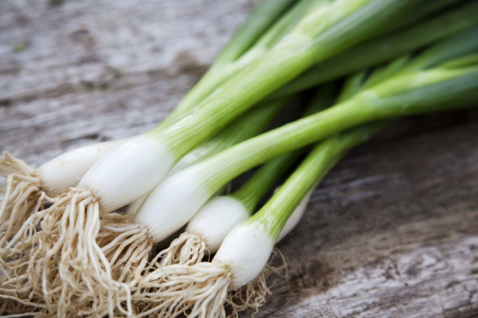 You Can Grow Your Own Scallions with Nothing More Than a Glass of Water—Here's How
