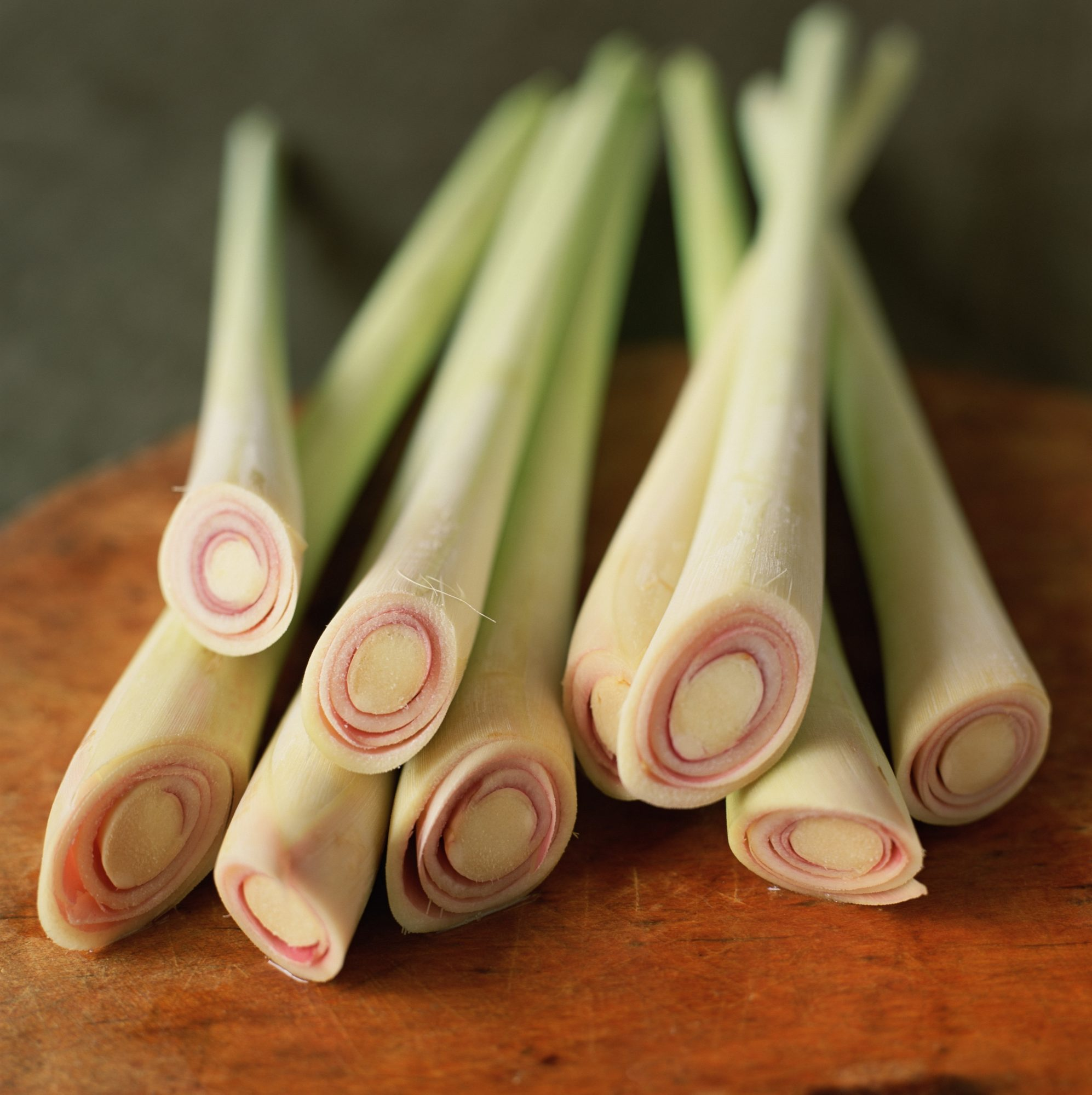 Did You Know You Can Grow Your Own Lemongrass at Home?